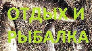 Рыбалка в полтавке омской области на 10 дней