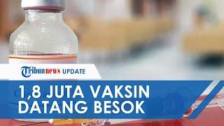 1,8 Juta Vaksin Sinovac akan Tiba Lagi di Indonesia Besok, Menlu: Kita Terus Akan Kawal Proses Ini
