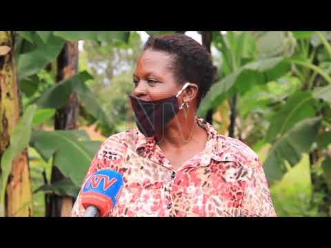 EMBUTO EZITALI NNEEYAGALIRE: Aba Marie Stopes bagamba abasajja be basinga okuvaako omutawaana