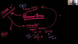 Bio 1010 and 2010 Lect 2.4 Covalent Bonds