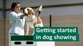How to get started in Dog Showing