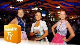 OKTOBERFEST HIT - Amanda, Nimm Die Hand Da Weg - Matrosen In Lederhosen  (Musikvideo)