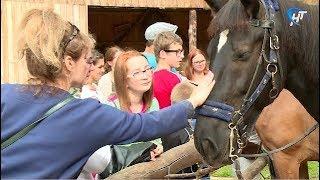 В «Витославлицах» прошла этнографическая программа «Кто с конем, тот с добром»