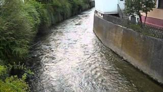 preview picture of video 'Wannweil: Echaz mit normalem Wasserstand am 12.07.2011'