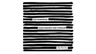 Old Dominion Say You Do