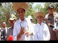 """Cek Lokasi Calon Ibu Kota di Kalteng, Jokowi: Cari """"Feeling""""-nya..."""