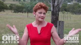 Pauline Hanson warns of incorrect AEC advertising to Senate voting