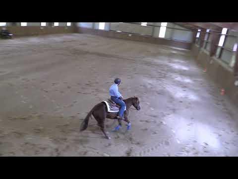 Campeonato Navarro de Reining 040519 Video 1