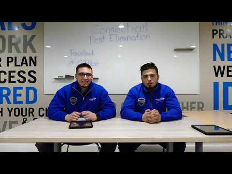 Connecticut Pest Elimination is a family owned and operated Pest Control Company that has been operating in Southern Connecticut since 1992. This video shows several of the team members, along with Mike