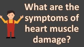 What are the symptoms of heart muscle damage ?  | FAQS for Health