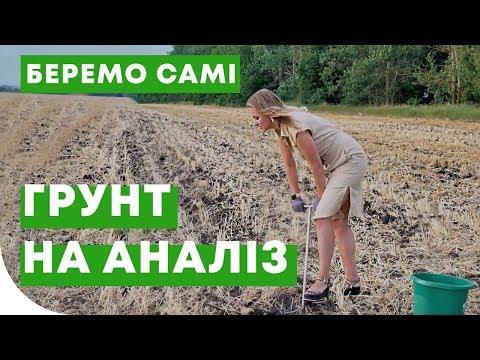 Как взять образцы почвы самостоятельно?