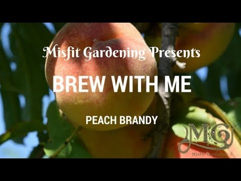 How To Make Peach Flavored Brandy Liqueur