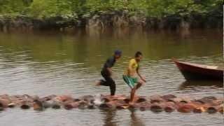preview picture of video 'Bokor Fiesta - Lomba Tual Sagu 1 - Bokor - Selat Panjang'