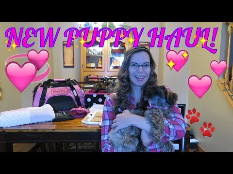 🐶🐾BEST NEW PUPPY HAUL!🐾BEST PRODUCTS FOR A NEW PUPPY!🐶🐾FIRST DAY TV
