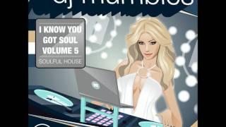 SOULFUL HOUSE MIX 2012 - DJ MUMBLES - I KNOW YOU GOT SOUL VOL. 5