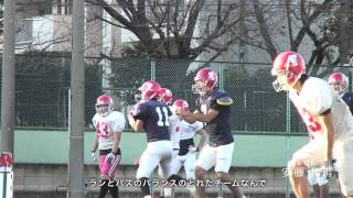 日本大学アメリカンフットボール部フェニックス甲子園ボウル優勝へ