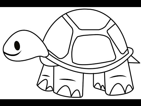 How To Draw A Tortoise Easy And Simple Steps LearnWithChandra