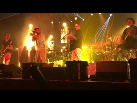 Servas baba - Seiler & Speer live 2016