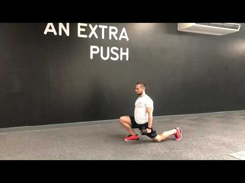 Reverse Lunges w/DB