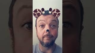 Giraffe pussy