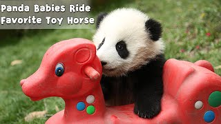 Panda Babies Ride Favorite Toy Horse | iPanda