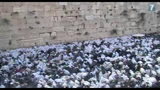 Video: Desítky tisíc Židů si přišlo pro Kněžské požehnání