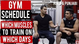 GYM SCHEDULE: Which MUSCLE to train on what DAY of week! (Hindi /Punjabi)