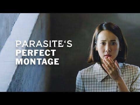Tojás paraziták a bőr alatt