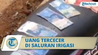 VIRAL Uang Tececer di Saluran Irigasi di Batang, Seorang Warga Ada yang Dapat hingga Rp10 Juta