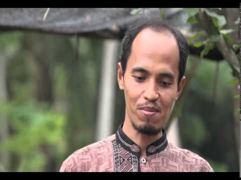 Video BUDIDAYA LIDAH BUAYA PART 2