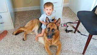 The Kids Want A Puppy! | Kholo.pk