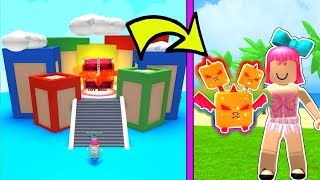 Roblox: I Found a *SECRET* PET In TOY LAND!