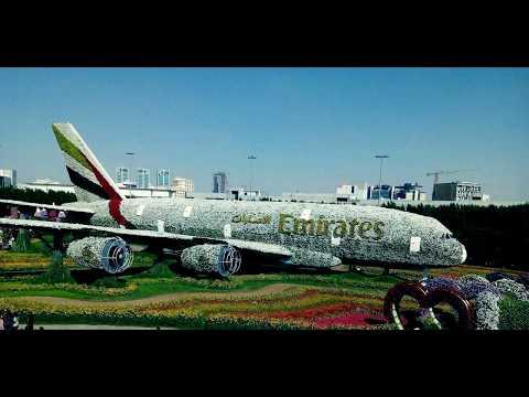 Дубаи. Парк цветов.
