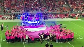 Arizona Cardinals Crucial Catch Halftime Show!!!