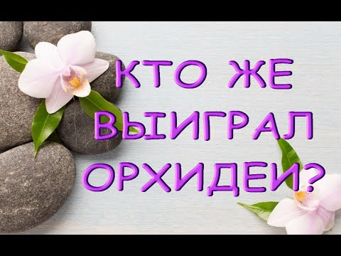 РОЗЫГРЫШ орхидей:ИТОГИ.К кому же поедут орхидеи? :)