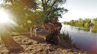 Рыбалки на сазана в низовье волги