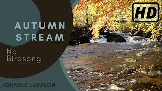 Relaxing Nature Sounds of Water Flowing in a Forest River for Calm Relaxation & Meditation