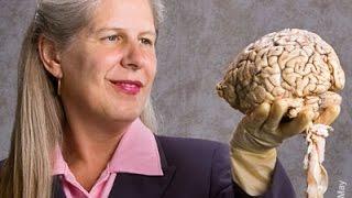 A neurocientista que curou o próprio cérebro