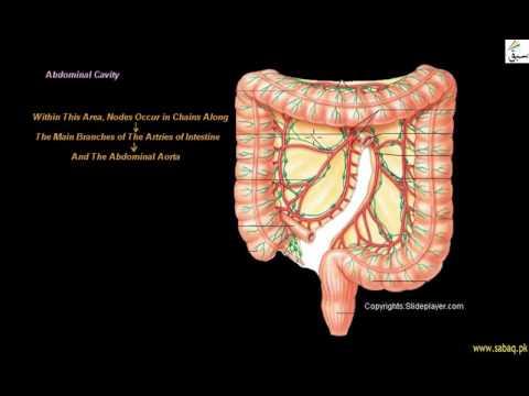 Ce simptome are cancerul de plamani