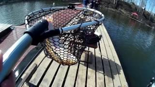 Савельево 2 отчеты о рыбалке