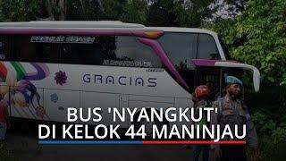 Ikuti Arah di Google Maps Bus 'Nyangkut' di Kelok 44 Maninjau, Polisi Sopir Ingin ke Lubuk Basung