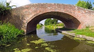 Getting Stuck In Weeds On The Beautiful Chesterfield Canal