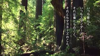 キユーピーマヨネーズ90周年