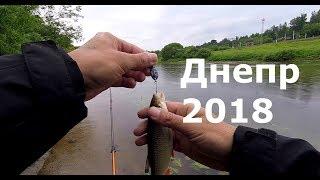 Удобные места для рыбалки в смоленской области на днепре