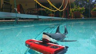 Shark Attacks Lego City Train
