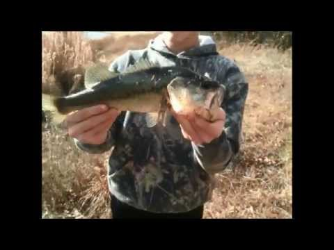 Christmas break Bass Fishing caught a monster bass (New pond)