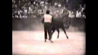 preview picture of video 'Corrida à DRAGUIGNAN (Var) - 1953 - 1954'