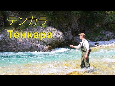 TENKARA - trout fishing in mountain stream