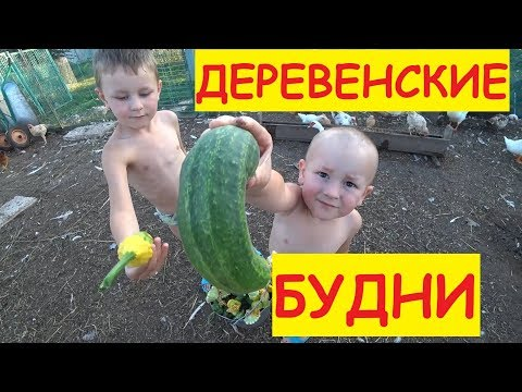 Деревенские будни / дети / Аля / Огород / Мама кошка / Семья в деревне