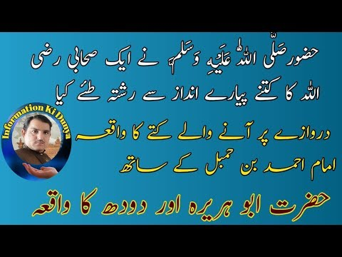 Sbeq aamoz islami byan 2019 mufti abdul shakoor kanfrence information ki dunya live